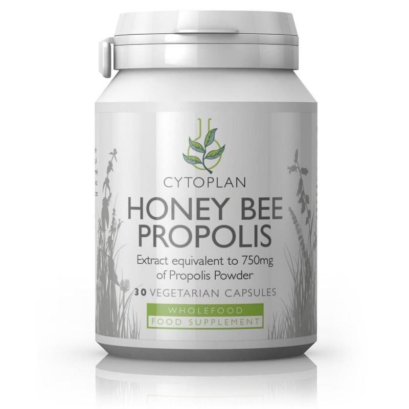 Honey Bee Propolis