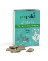 Kaugummi aus Propolis und Minze